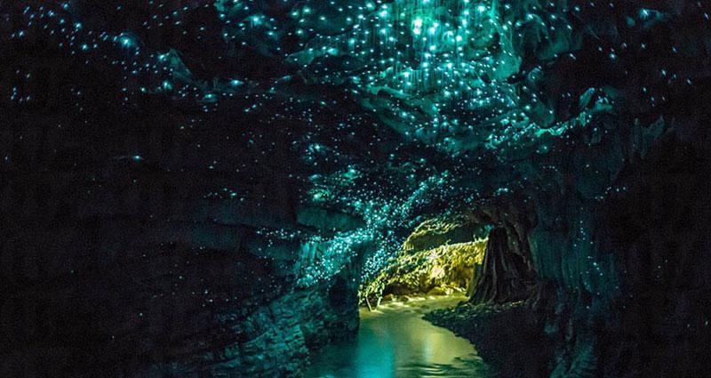 20150217155239_0_Waitomo Glowworm Caves2